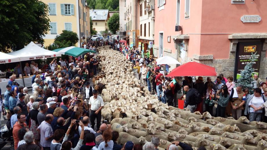 Le troupeau s'est élancé dans les rues du village, au grand bonheur des petits et des grands.
