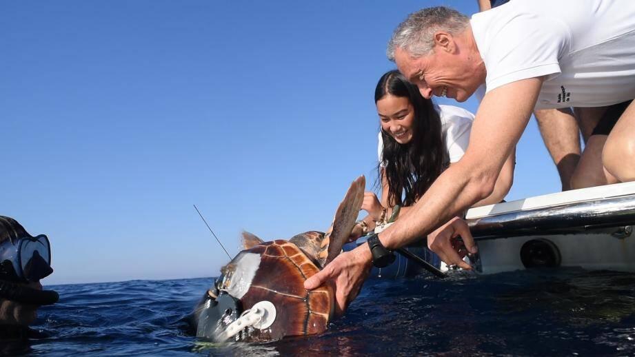 La tortue Rana a été relâchée à 2 km au large de Monaco.