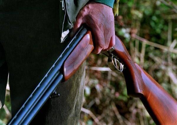 Illustration d'un fusil de chasse.
