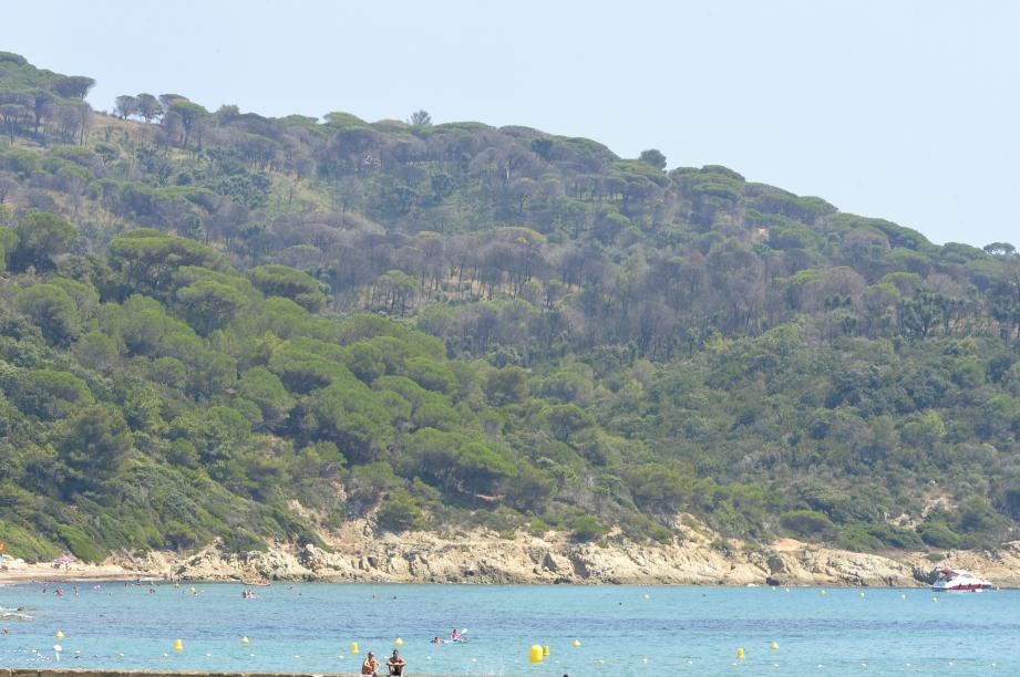 La verdure regagne du terrain au Cap Lardier.