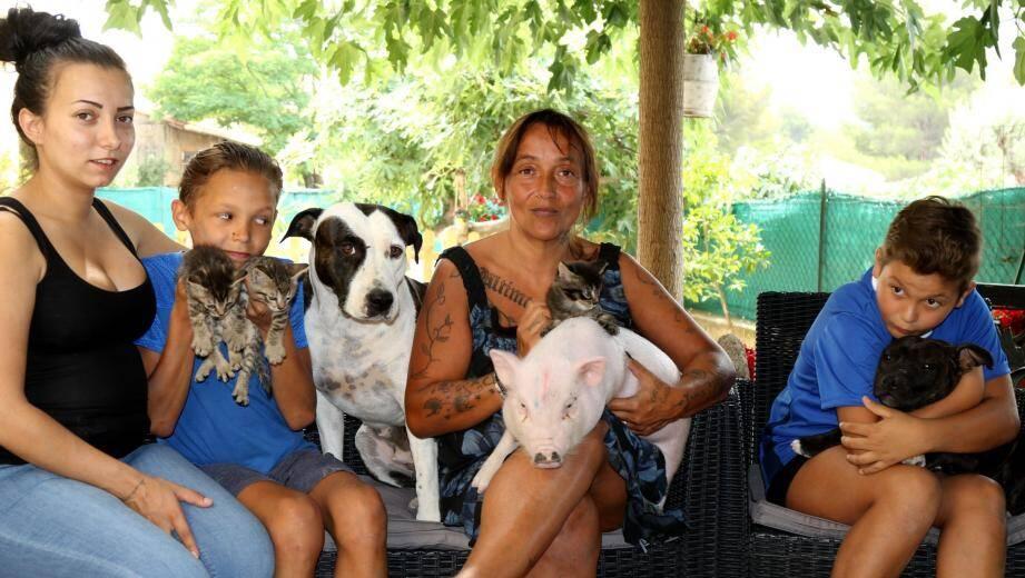 Au milieu des chatons, des chiens de ses maîtres Julie, Magalie, Morgan, Gabin, Marcel nage dans le bonheur.
