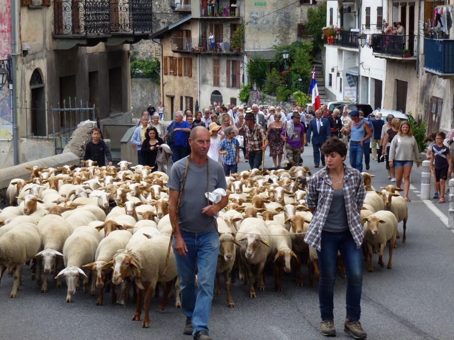 Le passage du troupeau en ville : un moment attendu, salué par les sonnailles sur la place de la mairie.