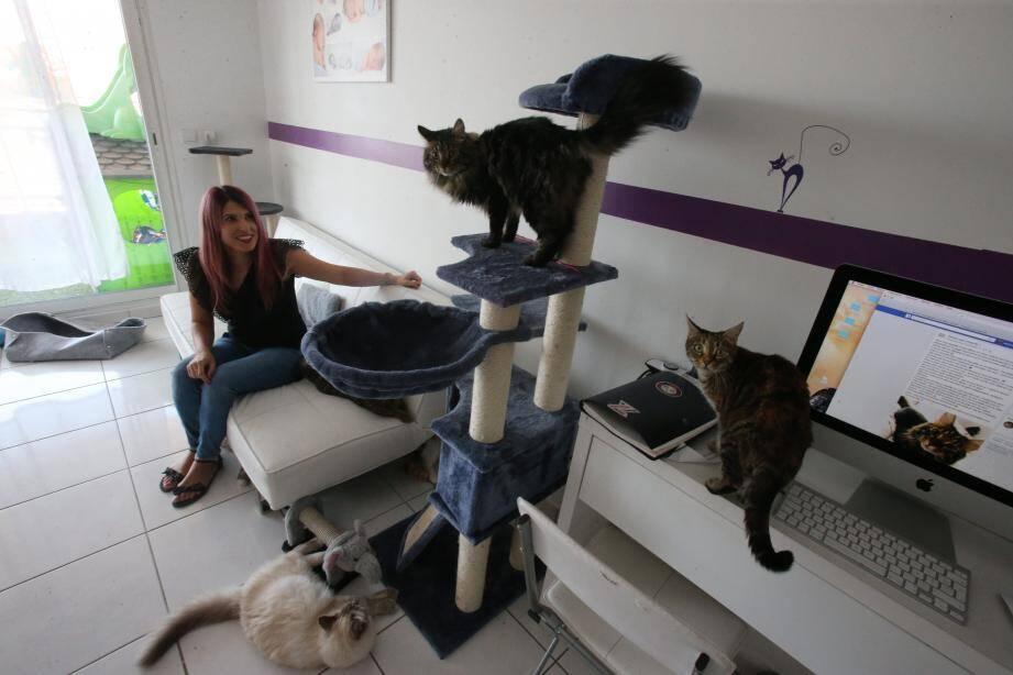 Anne-Laure accueille ses petits pensionnaires dans son appartement de 80m2.