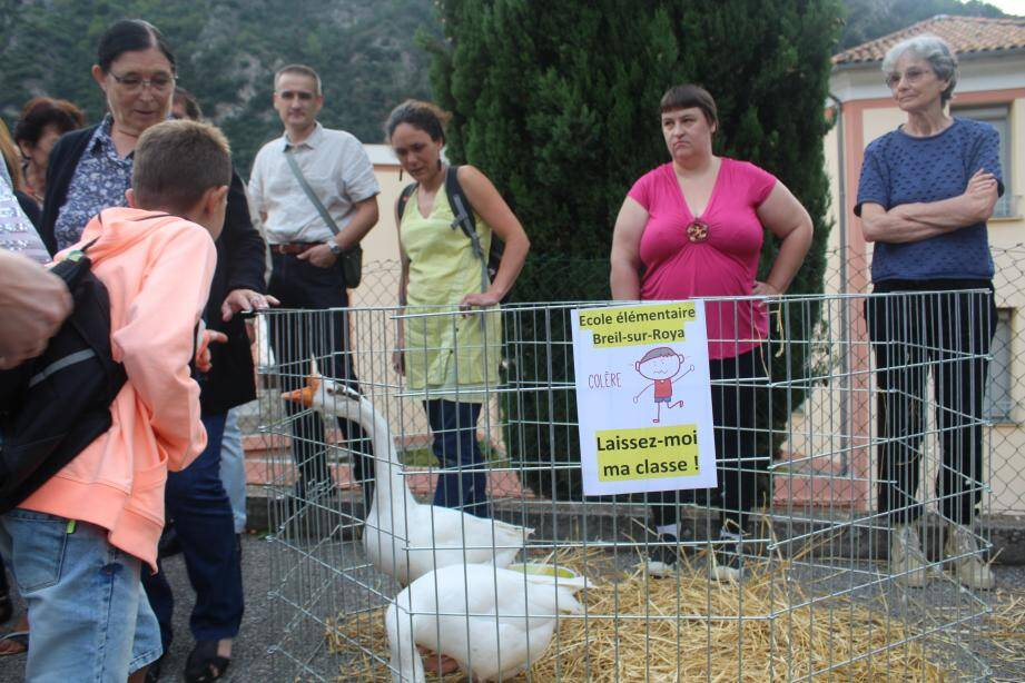 Parents et élèves ont fait leur entrée dans la cour de l'école au milieu d'oies, poules et chèvres apportés pour l'occasion.