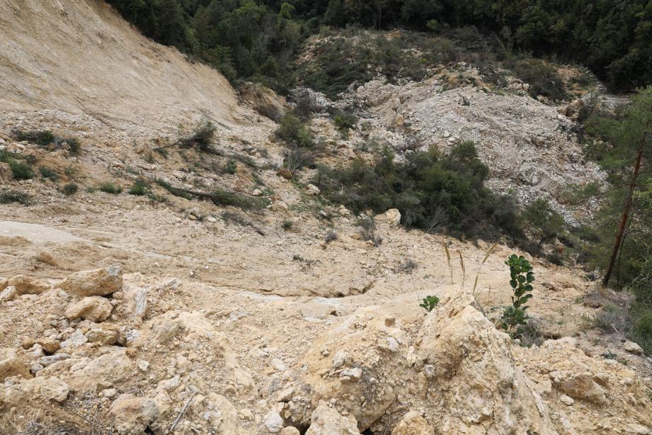 Vue plongeante sur le barrage naturel au pied du glissement de terrain, lequel a isolé les hameaux de Béroulf et Sainte-Sabine.