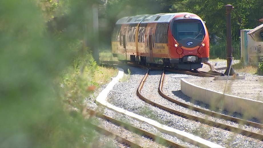 Sur le parcours du train des Pignes.