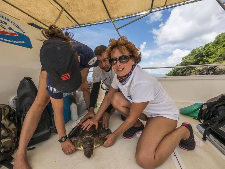 Corinne Copie, responsable scientifique pour les Explorations de Monaco, et Philippe Brousse, chef de la mission Martinique.