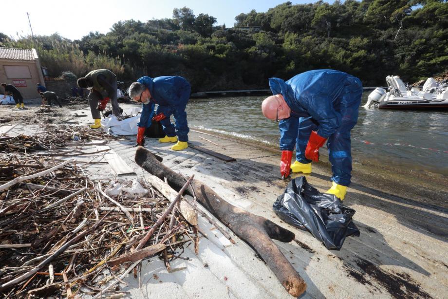 Alertés vendredi, les services de la mairie et des membres du CCFF ont procédé à une opération de dépollution du port du Pradet hier après-midi.