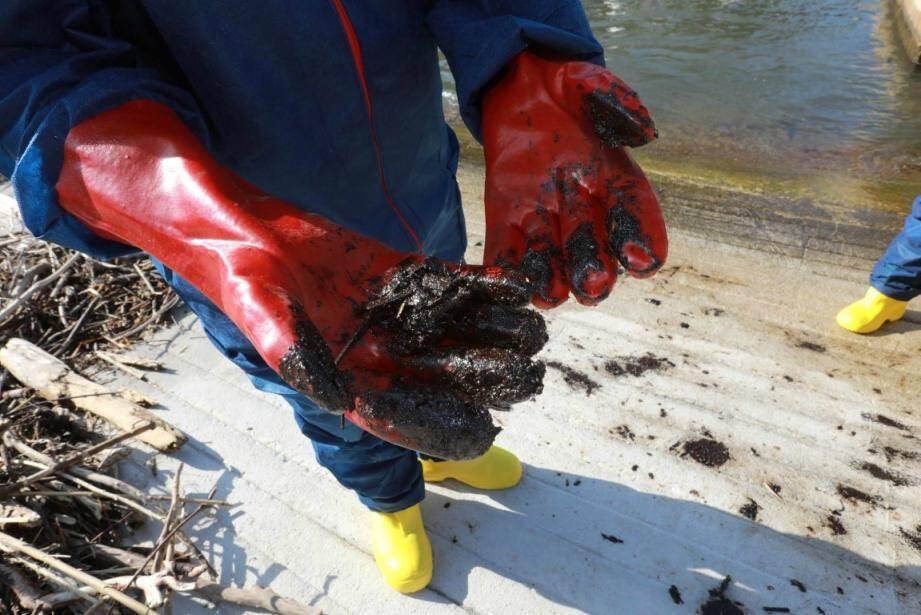 Une pollution aux hydrocarbures a atteint eaux et rivages hyérois.