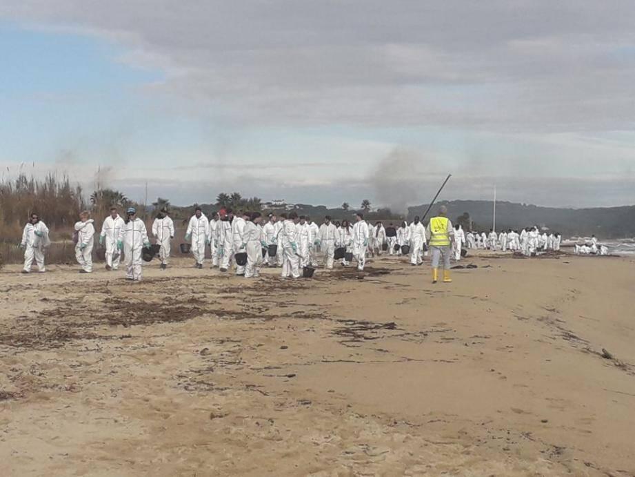 Une armée blanche -- 120 opérateurs -- est à pied d'œuvre ( hier à Pampelonne) afin de redonner son lustre au sable d'or du Golfe de Saint-Tropez. Le nombre d'intervenants pourrait grimper à 180 dans les prochains jours.
