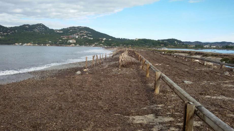La tempête du 30 octobre a considérablement dégradé la route du sel. La ville d'Hyères est sur le point de valider un ouvrage de protection.