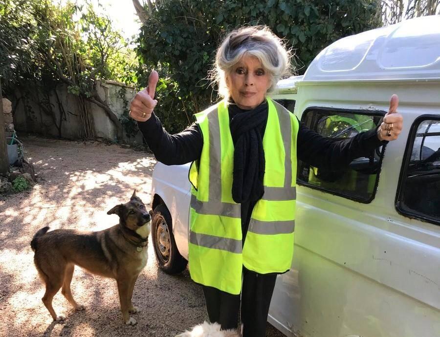 Brigitte Bardot a apporté son soutien officiel aux gilets jaunes.
