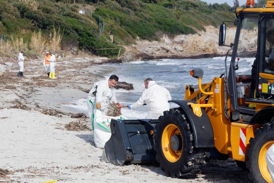 Courant octobre, les bénévoles étaient à pied d'œuvre plage des Salins, pour recueillir toutes les boulettes d'hydrocarbures.