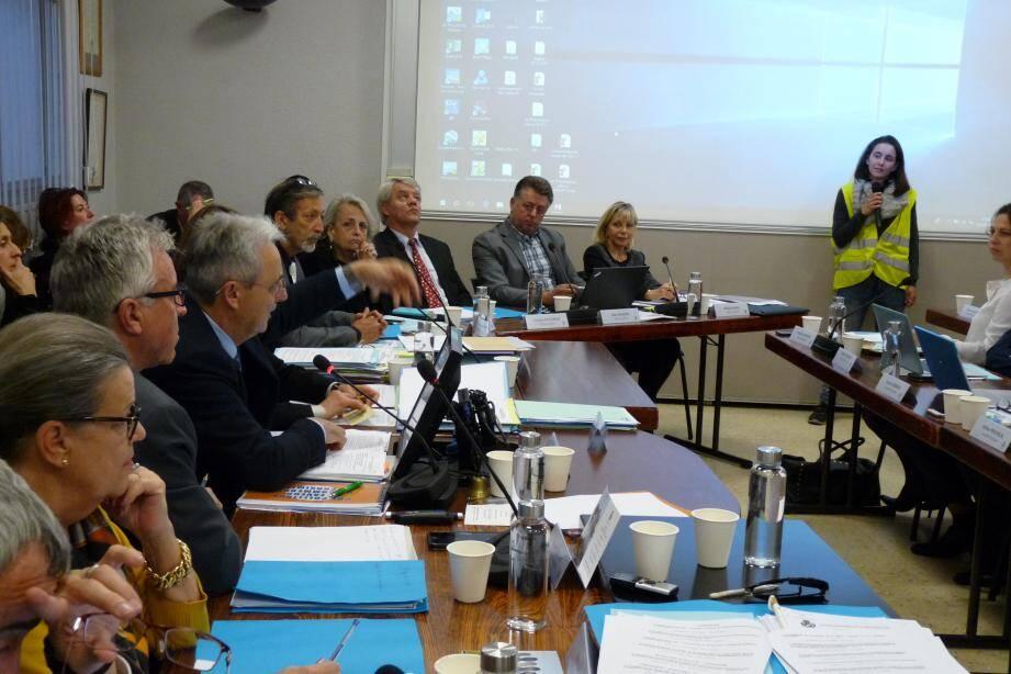 Lucie Formisano-Marfil, vendredi au conseil municipal : « On est un mouvement pacifiste pour le moment ».
