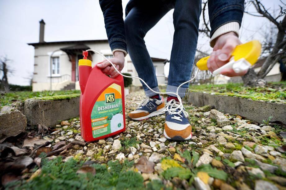 Fini les herbicides ! Pour désherber votre jardin, ou votre allée, il faut trouver des solutions alternatives.