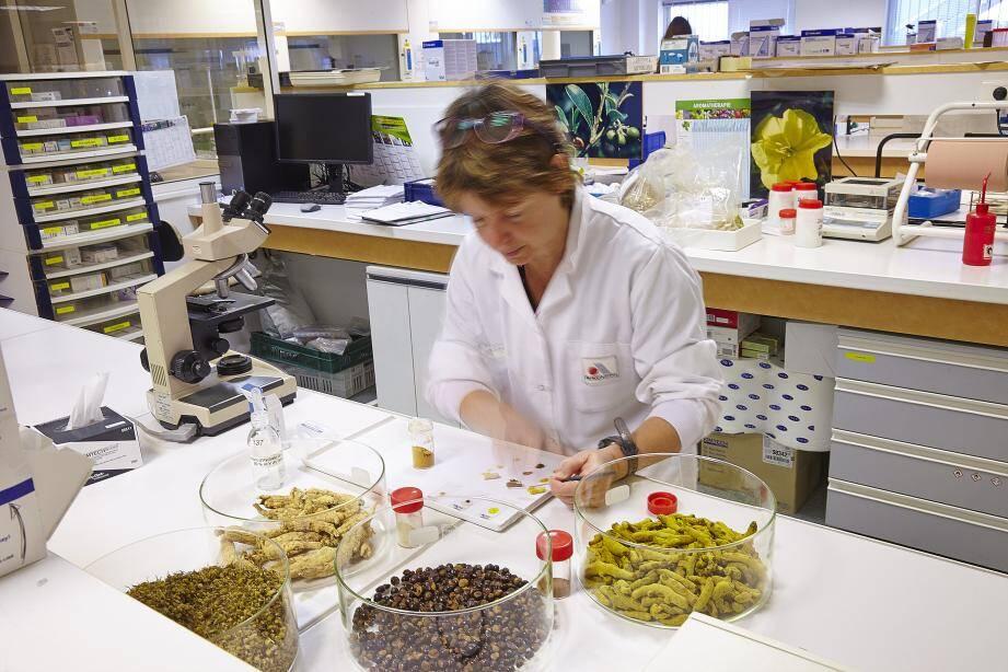 Le laboratoire Arkopharma, ce sont 1.200 salariés dont 900 à Carros; 1,2  Md de gélules et complémentaires alimentaires produits par an; un chiffre d'affaires de 200 millions d'euros dont 50% à l'export.