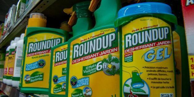 Image d'illustration du Roundup de Monsanto.