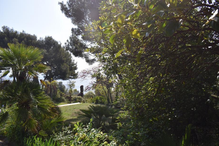 Le parc abrite une riche végétation.