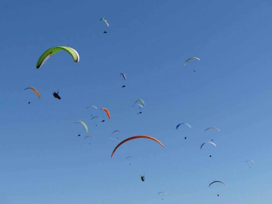 Les pilotes et leur parapente ont survolé l'arrière-pays grassois tout au long du week-end DR