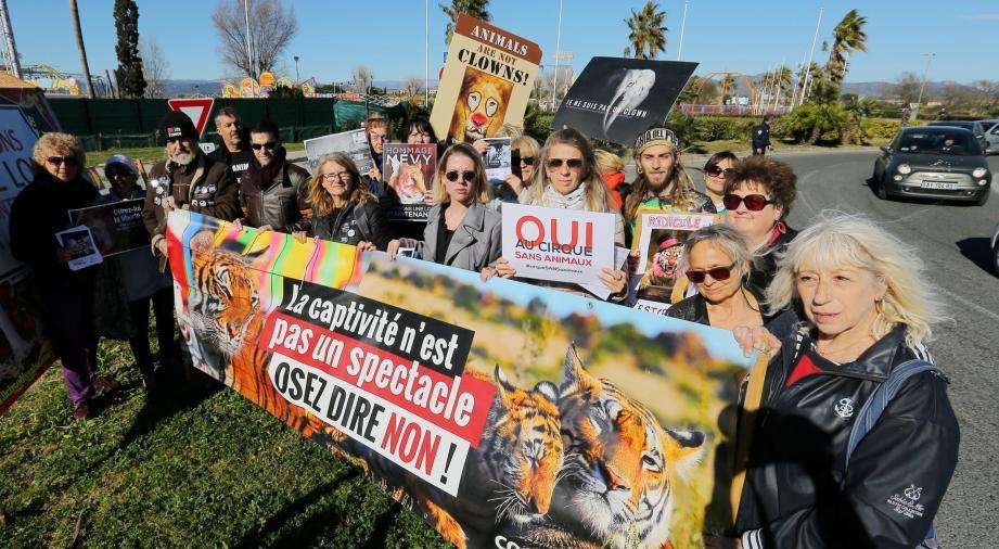 Le collectif pour la protection animale a manifesté hier après-midi.
