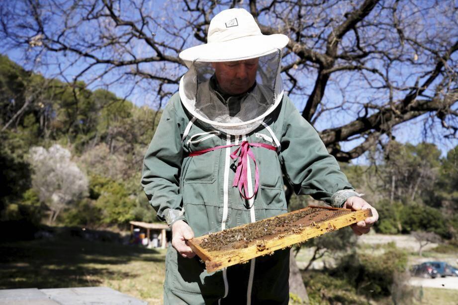 Le début du printemps rime avec contrôle des ruches et des effectifs.
