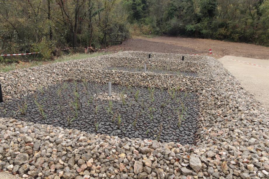 Le traitement des eaux polluées s'effectue à travers deux massifs filtrants drainés et plantés de roseaux.