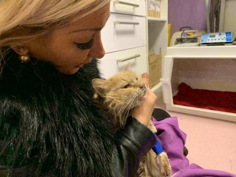 Mercredi, Sylvia est allé voir Luna à la clinique de La Souris verte, où l'animal reçoit des soins.