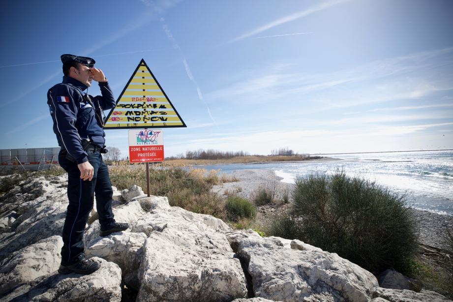 L'estuaire du Var est une zone naturelle protégée où vivent 250 espèces d'oiseaux. Elle est souvent souillée de détritus.