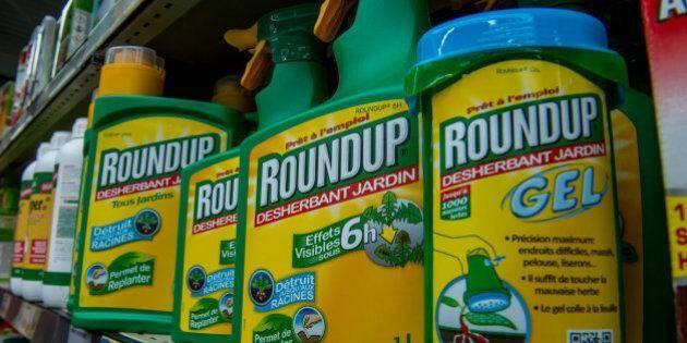 Monsanto a décidé de faire appel du jugement.