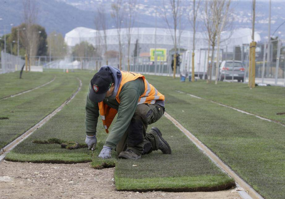 Avant la Coupe du monde féminine de football en juin, l'aménagement en surface de la ligne 3 devrait être terminé.