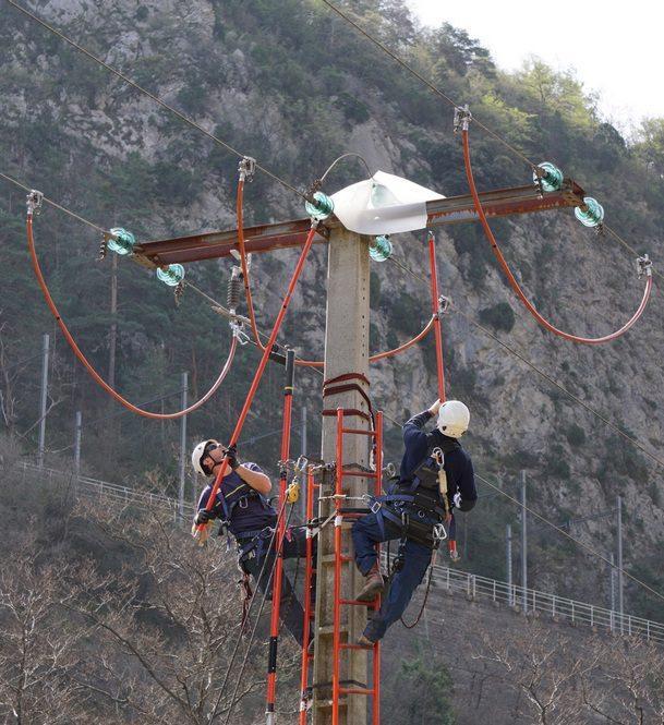 Des protections pour les oiseaux ont été posées sur les lignes électriques de la commune.