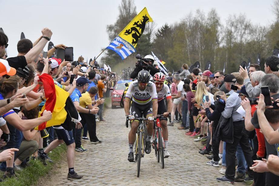 Vainqueur du dernier combat de boxe en date à Roubaix, Peter Sagan le puncheur conservera-t-il sa « ceinture » demain ?