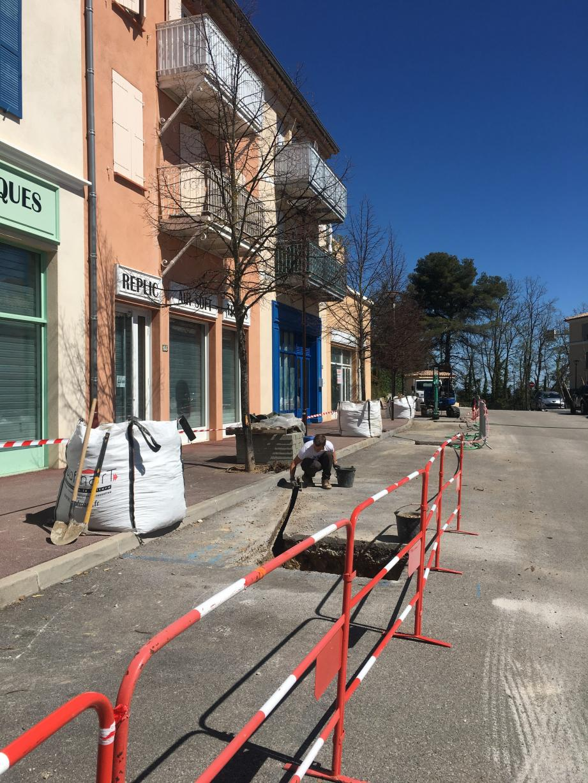 Bientôt des essences méditerranéennes vont agrémenter les aménagements et les voies piétonnières du quartier.