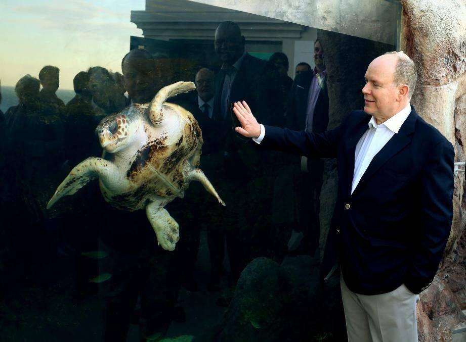Le Souverain a inauguré le nouvel espace dédié aux tortues.