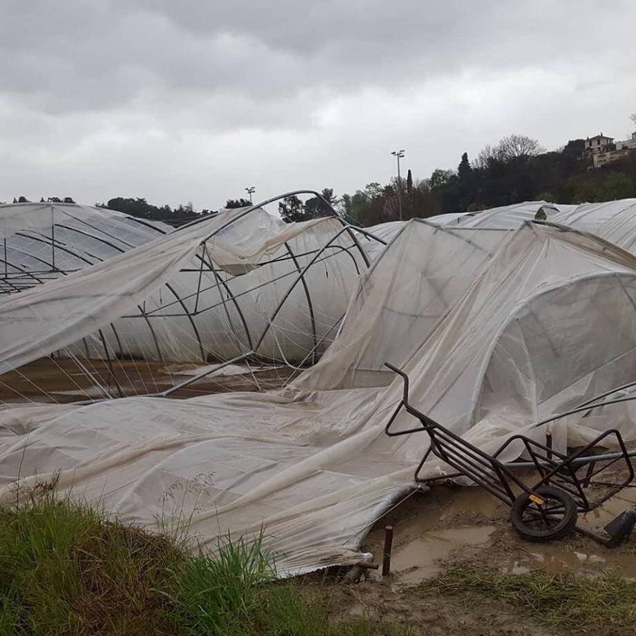 Les dégâts à la ferme des Grenouilles, située aux Plans de Villeneuve-Loubet.