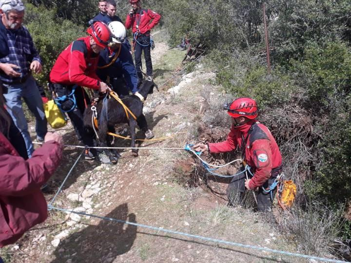 Les sapeurs-pompiers des Bouches-du-Rhône durant l'opération.