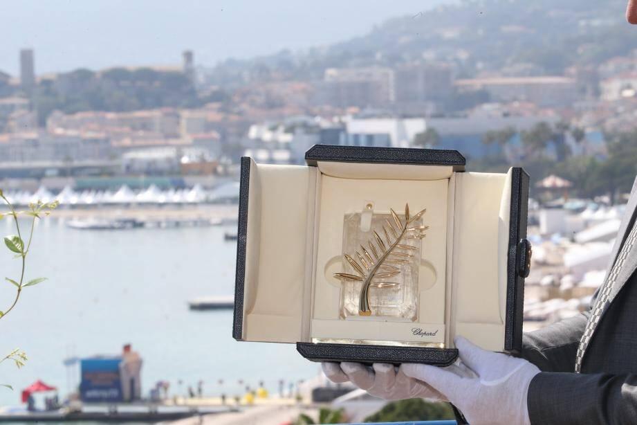 La Palme d'or du Festival de Cannes.