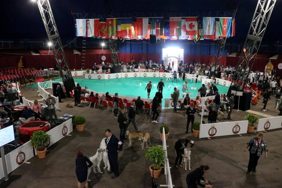 Des juges du monde entier viennent à l'exposition.