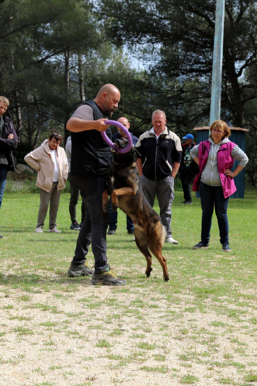 « Le chien doit comprendre ce que nous voulons de lui. En aucun on ne peut punir le chien. S'il se trompe, ce n'est pas grave » expliquent les éducateurs canins catalans.
