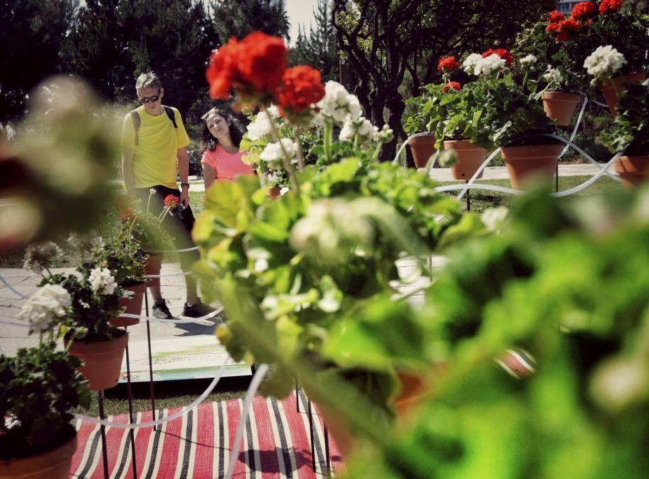 Jardin Malin revient demain au Square Balloux au Cros-de-Cagnes pour une deuxième édition.