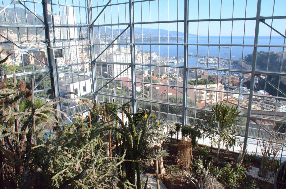 Les serres du nouveau Centre Botanique se situent en face du Jardin Exotique.