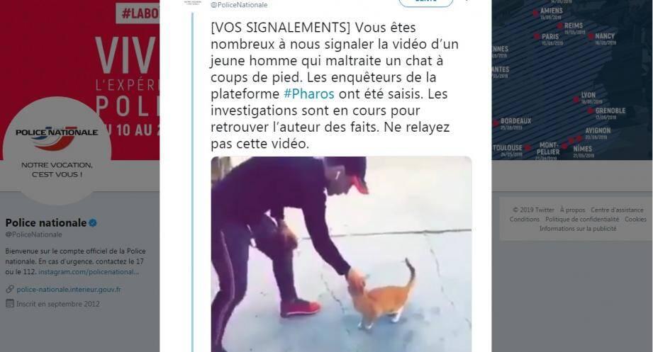 police recherche homme chat
