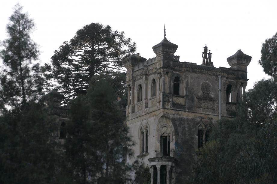 Les neuf hectares du Château Robert, sur les collines de Golfe-Juan.
