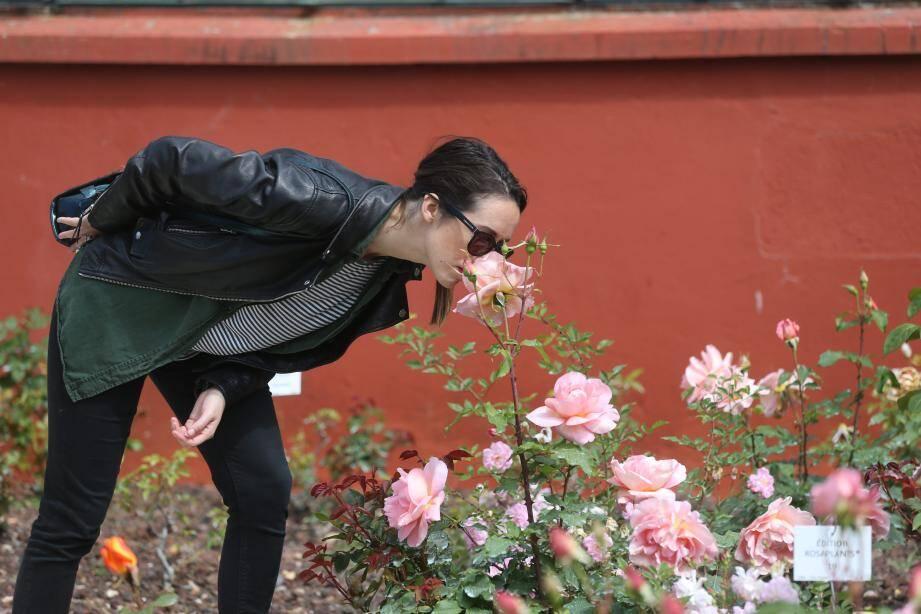 Visitez les jardins de la Villa Eilenroc gratuitement!