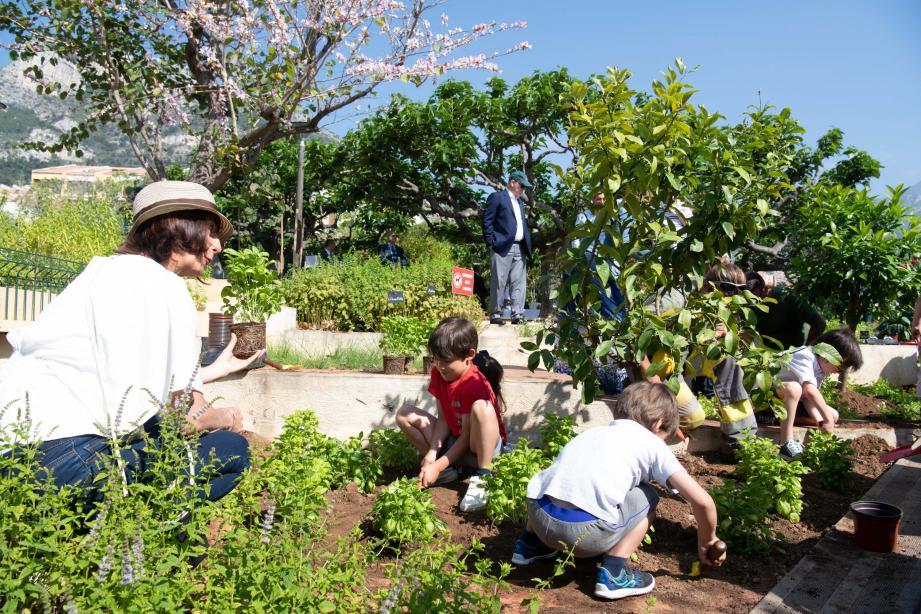 Première action : un programme de plantation a été lancé dans les jardins de Fontvieille.(DR)