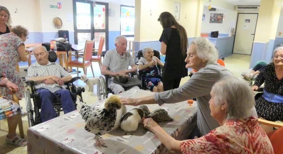 Ensemble, caresses et jeux de doigts font oublier les mauvais moments des pathologies liées à la vieillesse. (Photos C. I.-C.