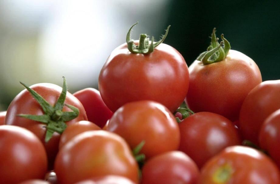 Le comité national de l'agriculture biologique a décidé d'autoriser l'utilisation de serres chauffées en agriculture bio, tout en encadrant leur utilisation