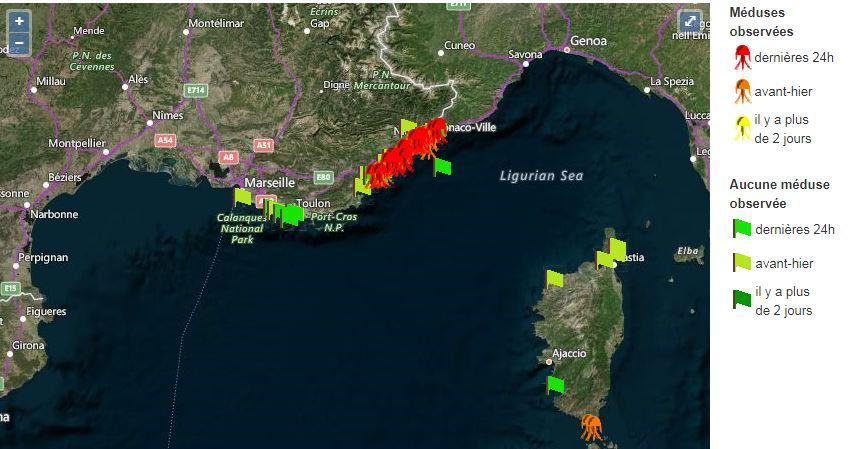 L'ensemble du littoral sera renseigné, à terme. Et en zoomant sur la carte, on peut voir la situation sur  chaque plage.