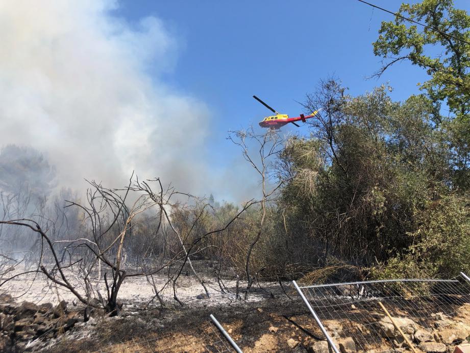 Au total, 1,5 hectare a pris feu. Les opérations des sapeurs-pompiers et des agents de Force 06 ont permis de sauvegarder les quatre habitations menacées de cette zone résidentielle.