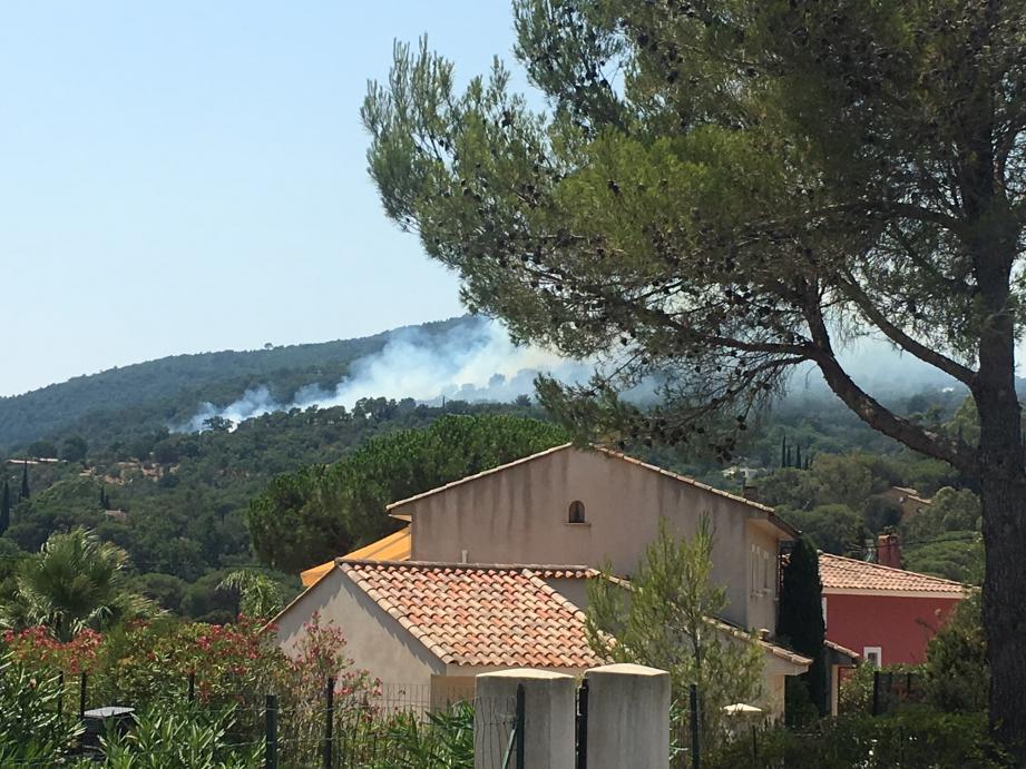 3.000m2 de forêt sont partis en fumée.